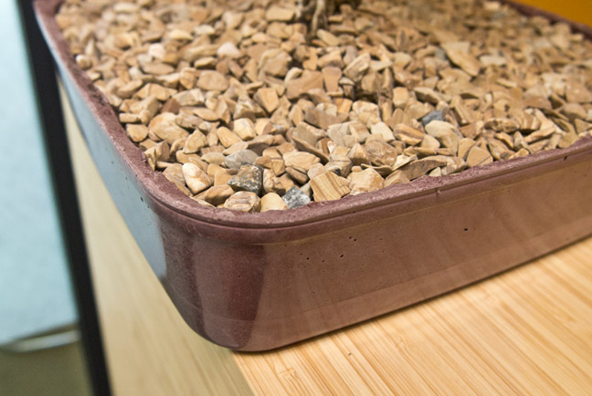 bonsai planter shapecrete bonsai tree medium round blue ceramic planter sculpture by